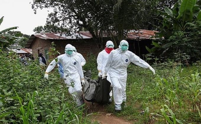 Эбола — лечение за полгода